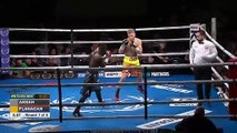 Terry Flanagan vs Michael Ansah (11-10-2019) Full Fight