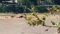 ارتفاع حصيلة ضحايا إعصار هاغيبيس في اليابان ومحاولات إخلاء المحاصرين مستمرة