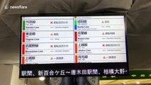Typhoon Hagibis causes travel disruption around Tokyo