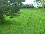 Bac a herbe mdr ( délire )