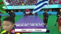 Wales v Uruguay - Highlights