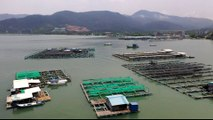 Malaysian fish farmers call on gov't to tackle water pollution