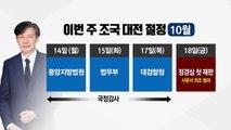 이번주 '조국 대전' 절정...檢, 정경심 영장 고심에 고심 / YTN