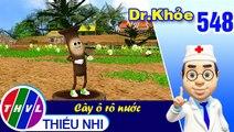 THVL | Dr. Khỏe - Tập 548: Cây ô rô nước  – Phần 1