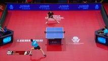 Xu Xin vs Jeoung Youngsik   2019 ITTF German Open Highlights (1/2)