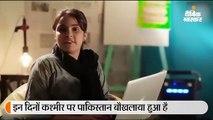 भारत को लेकर पाकिस्तान ने बनाया विवादित विज्ञापन