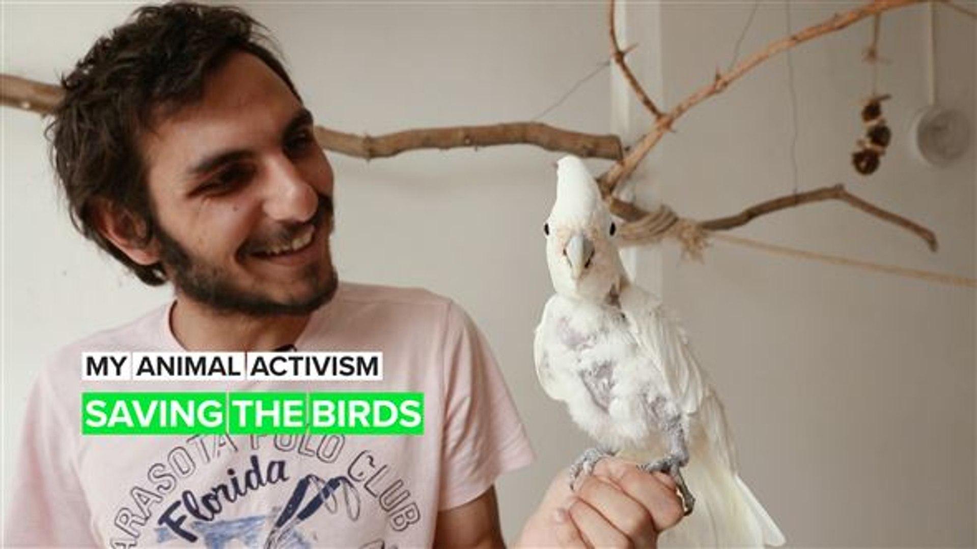 My Animal Activism: The Birdman
