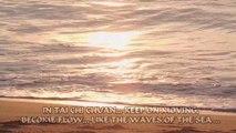 Tai Ji - The Flow of Tai Chi Chuan   martial arts by Laura Bonthuis