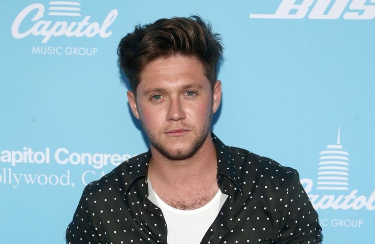 Niall Horan says a Selena Gomez duet would be 'great'
