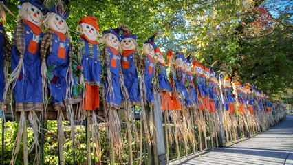 This Tiny Town in Tennessee Has More Scarecrows Than People