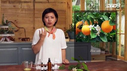 Trong Vườn Nhà - Tập 7- Xua tan mệt mỏi với tinh dầu xịt phòng thiên nhiên - DreamsTV - 2017