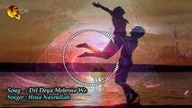 Dil Deya Mehrama We | Hina Nasrullah | Punjabi Love Song | Gaane Shaane