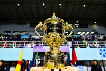 Coupe du Monde 2019 de rugby : date, heure et chaîne TV des quarts de finale