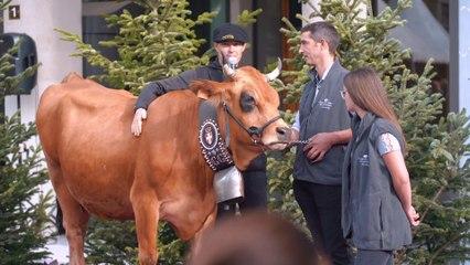 La Descente des Alpages - Grenoble 2019