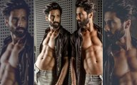 After Kabir Singh, Shahid Kapoor to star in the hindi remake of another Telugu Film, Jersey
