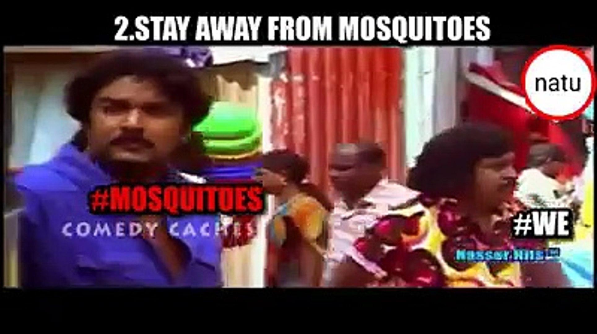 Vadivelu Dengue Awareness Version Memes Video Dailymotion