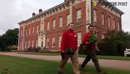 Beningbrough Hall painting restoration