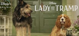 Lady And The Tramp Trailer 11/12/2019