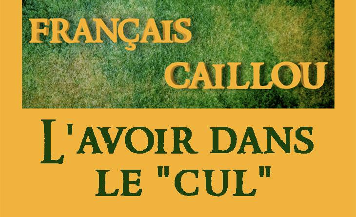 """Français caillou / Définition du jour : L'avoir dans le """"cul"""""""