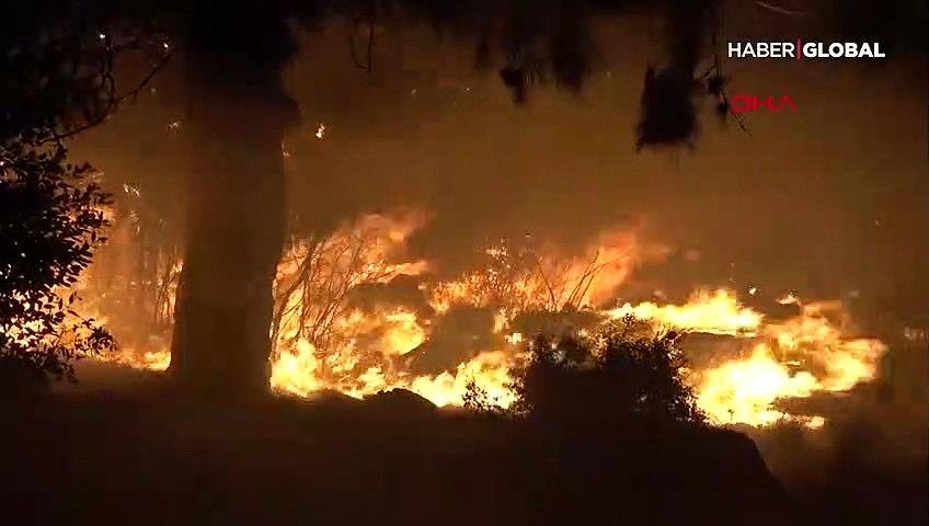Mersin'in 3 ilçesinde orman yangını