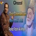 Dost Ghamkhwari Mein Meri Sahi - Rahat Fateh Ali Khan - Ghazal Mirza Ghalib