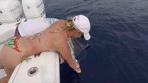 EPIC Blue Marlin attrapé en PÊCHE pour le thon à nageoires jaunes