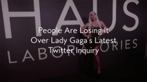 People Are Losing It Over Lady Gaga's Latest Twitter Inquiry