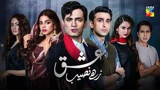 Ishq Zahe Naseeb Episode 19 Promo HUM TV Drama