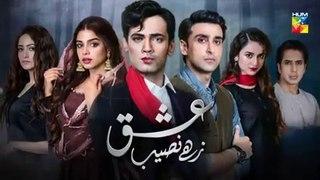 Ishq Zahe Naseeb Episode 18 HUM TV Drama