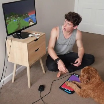 How I Taught My Dog to Play Minecraft