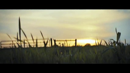 BrightBurn Trailer #1 (2019) - Movieclips Trailers