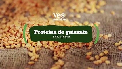 Proteína de guisante, beneficios para la salud