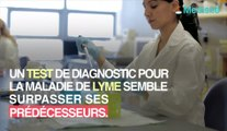 Maladie de lyme : un test pourrait la détecter en 15 minutes !