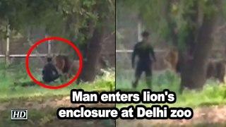 Man enters lion's enclosure at Delhi zoo