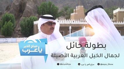 600 ألف ريال و7 سيارات.. جوائز بطولة حائل لجمال الخيل العربية الأصيلة