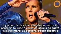 Céline Dion : son retour sur scène a failli la conduire à la catastrophe
