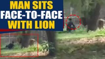 Man jumps inside Lion's Enclosure, sits face to face with lion, video goes viral   OneIndia News