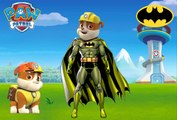 Paw Patrol Turn Into Superheroes Spiderman Superman Batman Transforms Coloring For Kids