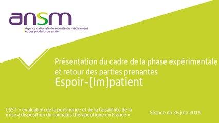 Présentation du cadre de la phase expérimentale et retour des parties prenantes Espoir‐(Im)patient
