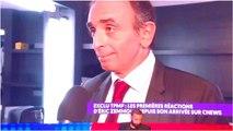 Eric Zemmour sur CNews : les chroniqueurs de TPMP défendent son arrivée, les internautes furieux !