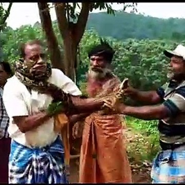 Deadly 10-foot-long python coils around Indian man's neck and has to be unwrapped