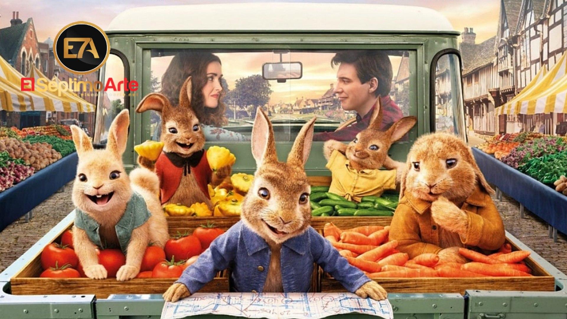 Kết quả hình ảnh cho Peter Rabbit 2: The Runaway