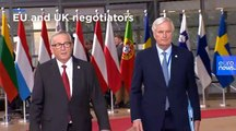 Here's a summary of what happened on Brexit at today's EU summit in under 150 words