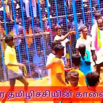 #veera tamilachi bulls #jallikattu videos in #tamil nadu.