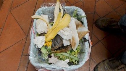 Erschreckende Zahlen: So viel Essen landet im Müll