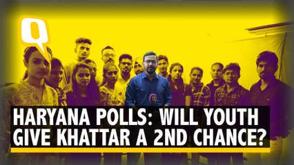 Ahead of Haryana Polls, Youths Talk About Jobs, Nationalism