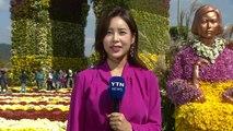 [날씨] 주말, 완연한 가을...남도 국화 축제 한창 / YTN