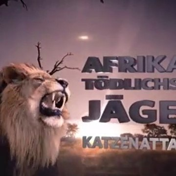 AFRICA'S DEADLIEST () CAT ATTACK