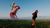 Hundreds of colourful kites perk up skies above Malta's Gozo