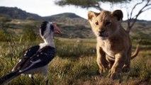 Le Roi Lion - Vidéo à la Demande d'Orange